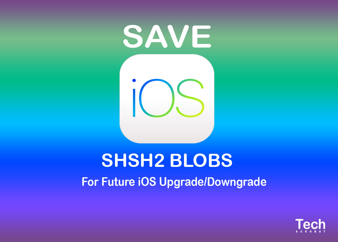 How To Save SHSH2 Blobs for Downgrade iOS 12 4 TSS Saver