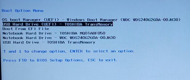 boot checkra1n USB from boot manager on windows