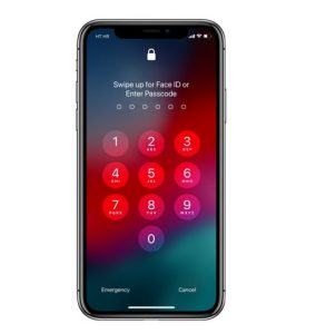 Apple Face ID or Touch ID locked