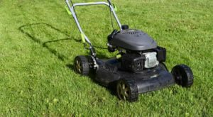 gas-guzzling lawnmowers and generators